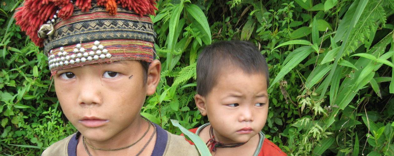 Environmental history of Vietnam